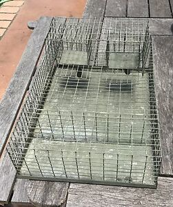 Self Resetting Automatic Bird Trap Metford Maitland Area Preview