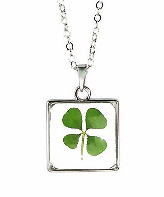 Celtic Lucky Real Four Leaf Clover Glass Square Pendant Necklace Silver Plated Celtic Silver Plated Necklace