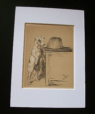 Mutt Mat - Terrier? Mutt Dog Print Cecil Aldin Bookplate 1902 Whats On That Table Matted