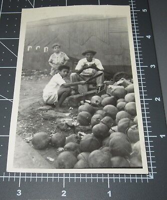 Man Eating Boy (Boys CHOP OPEN Raw COCONUTS Tropical Nut Eating Bark Young Men Vintage)