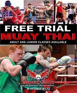 Muay Thai Class Wangara Wanneroo Area Preview