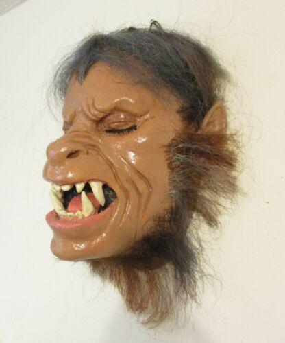 Life size American Werewolf display head Rick Baker