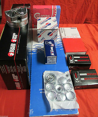 Ford 6.4/6.4L Powerstroke Diesel Rering Kit Rings+Gaskets+Bearings 08-10 NO (Pist Kit)