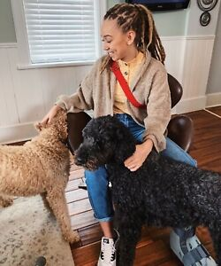 Dog/House Sitting and Dog Walking