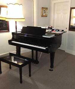 Piano Teacher                     Peter Wall     ATCL (Lond) Hamilton Newcastle Area Preview