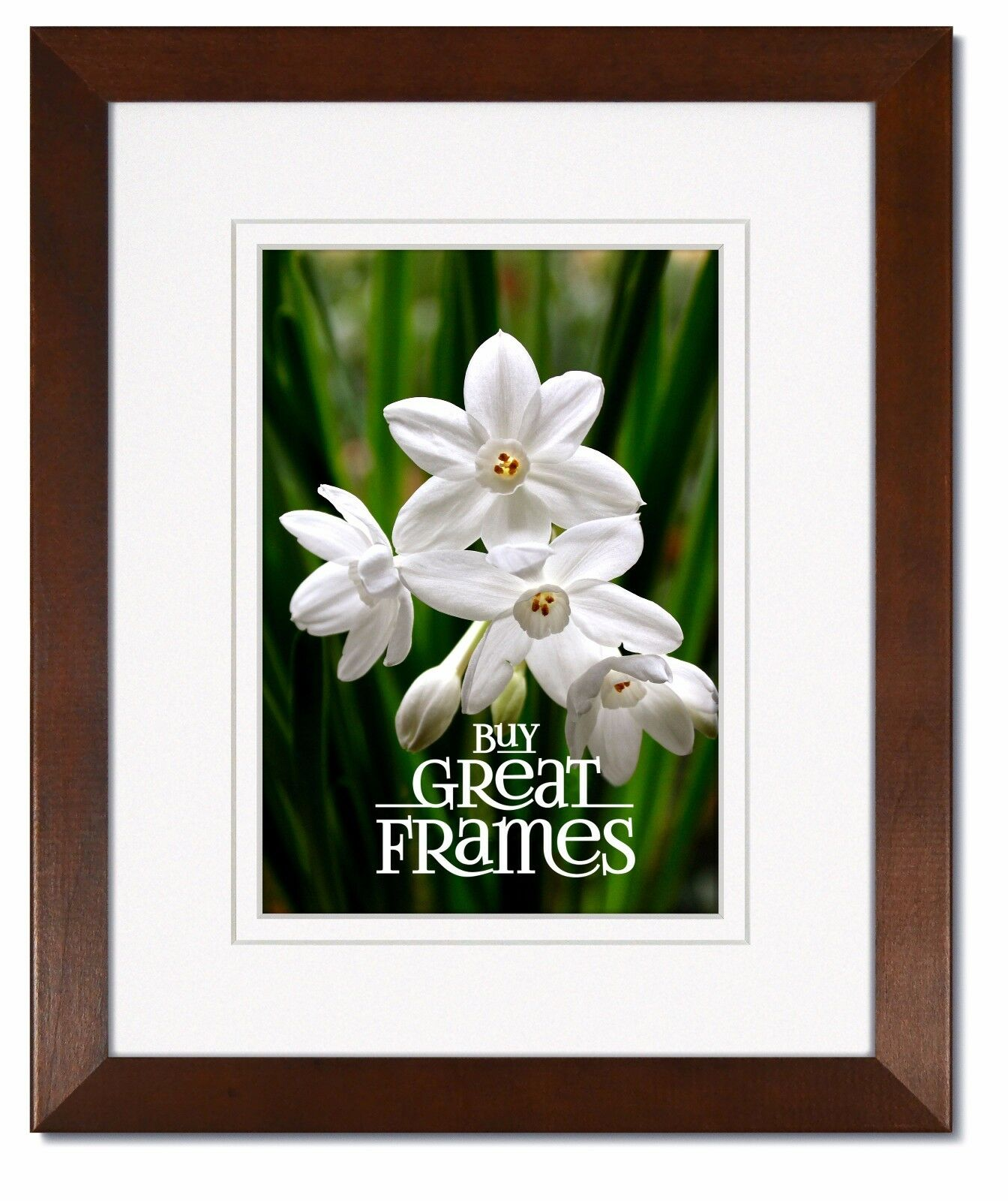 Madeline Walnut Wood Picture Frames with Double White/White