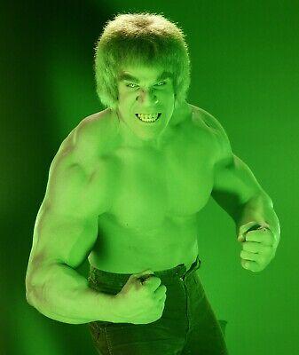 The Incredible Hulk - TV SHOW PHOTO #7 - LOU FERRIGNO