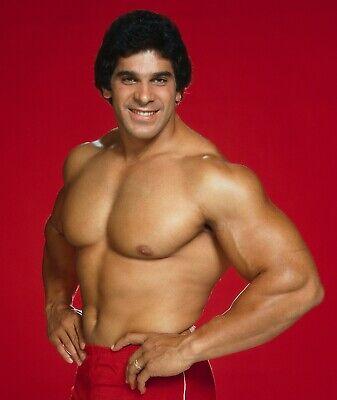 The Incredible Hulk - TV SHOW PHOTO #16 - LOU FERRIGNO