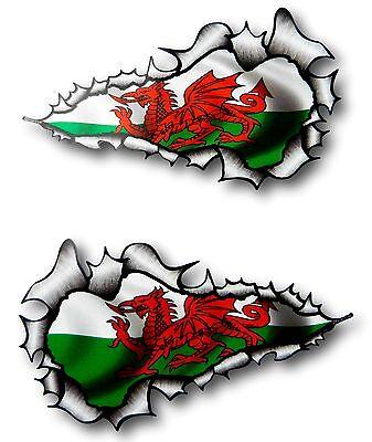 Grande Largo Pareja Rasgado Metálico Gales Cymru Bandera Pegatina Adhesivo Coche