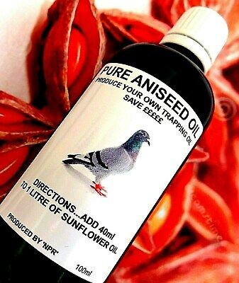 Pure Aniseed Oil Racing Fancy Pigeons Fishing Vermin Bait Attractant Feed 'NPR'