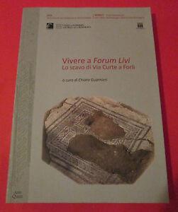 Romagna-VIVERE-A-FORUM-LIVI-Lo-scavo-di-via-Curte-a-Forli-C-Guarnieri