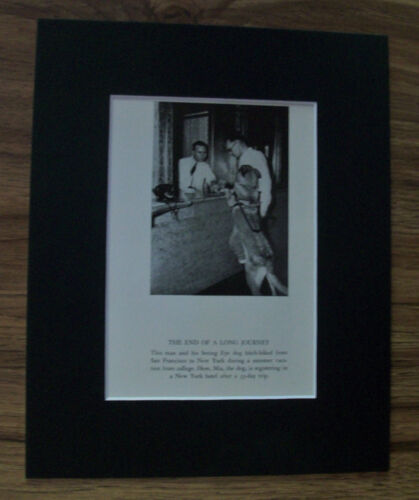 Print German Shepherd Dog Man Blind See Eye End Long Journey 1937 Bookplate Mat