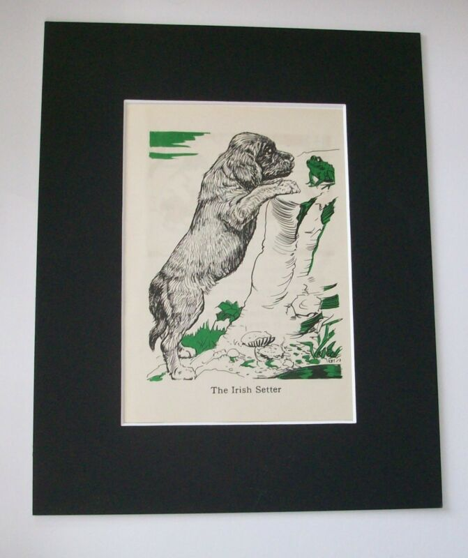 Irish Setter Diana Thorne Bookplate Print 1940 Matted Puppy Dog Looking At Frog