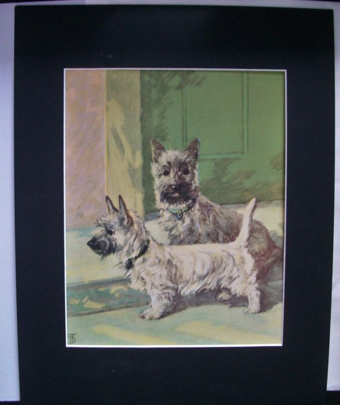 Print Diana Thorne 2 Cairn Terriers Alert Bookplate Dog 1932 11x14 Matted Cute