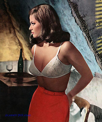 CLAUDIA CARDINALE IN THE 1960S  SUPER SEXY  BUSTY BRA PHOTO