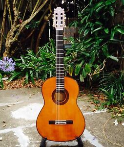 Yamaha G-250S Classical Acoustic Guitar Ashfield Ashfield Area Preview