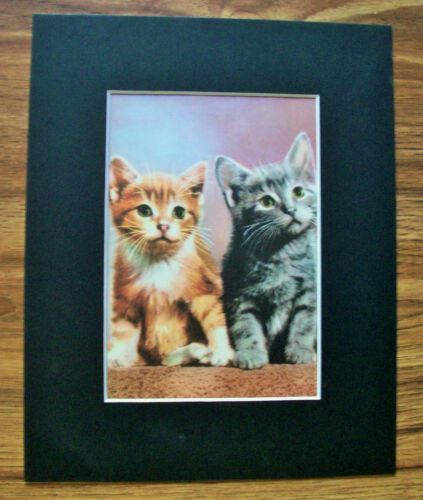 Print 2 Kittens Peggy Burrows Gajda Orange Gray Cats 1955 Bookplate 8x10 Matted
