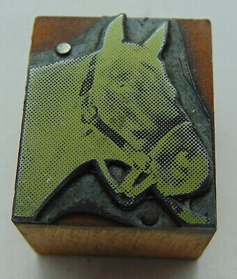 Vintage Printing Letterpress Printers Block Detailed Horse Head
