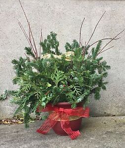 Christmas arrangement - fir, cedar & red dogwood London Ontario image 2