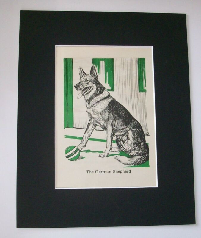 German Shepherd Diana Thorne Bookplate Print 1940 Matted Dog Ready To Play Ball
