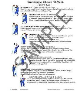 Banners Judo  in Malese (Struzzjonijiet tal-judo bil-Malti) North Wollongong Wollongong Area Preview