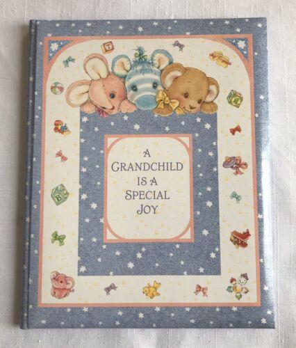 Hallmark Baby Memory Book For Grandparent A Grandchild Is A Special Joy Unused - $18.00