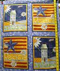 Daisy Kingdom Quilt Blocks & Tops