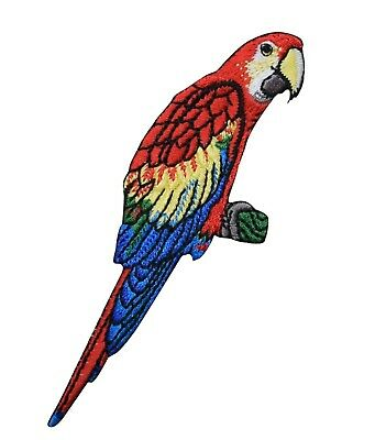 Scarlet Macaw Parrot - Tropical Bird - Iron on Embroidered Patch for sale  Shipping to India