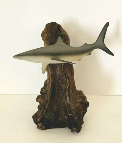 John Perry Caribbean Reef Shark & Burlewood Sculpture