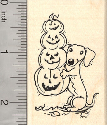 Halloween Dachshund Dog Rubber Stamp, with Long Jack-O-Lantern H25520 WM - Dachshund Halloween