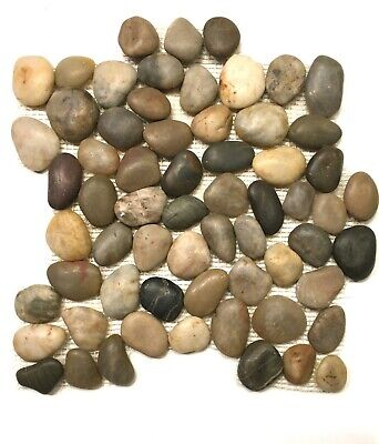 Multi Color 12x12 Pebble Stone Mosaic Floor And Wall Tile Backsplash -