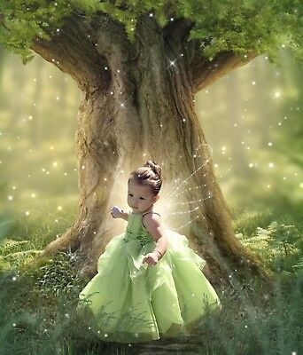 Tinkerbell Costume For Girls (Tinker Bell Disney Girls Costume Detachable Dress)