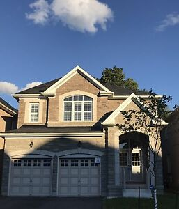 Steeles/Markham Road :Totally New house for rent
