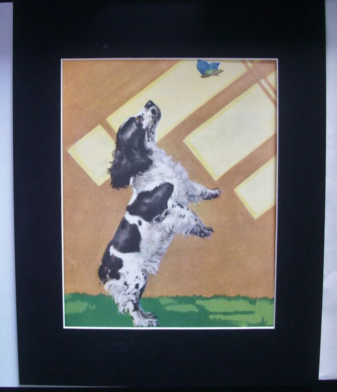 Dog Print Diana Thorne Cocker Spaniel Chase Bluebird Bookplate 1932 11x14 Matted
