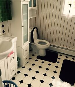 Large sized room for rent/Female roommate needed