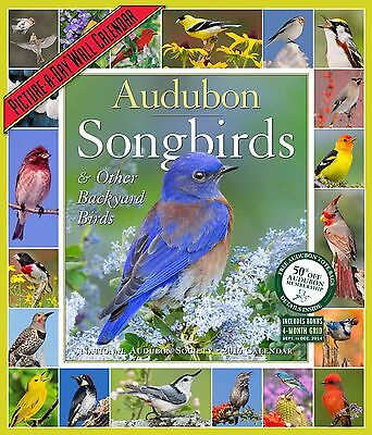 Audubon Songbirds & Other Backyard Birds Picture-A-Day Wall Calendar 2016