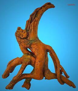 Aquarium Deko ► MANGROVEN-WURZEL ◄ Terrarium Dekoration Baum Zubehör