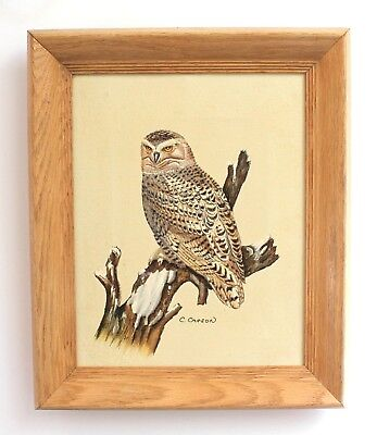 "Vintage Wood Framed Owl Oil Painting Signed C Carson 10"" x 12"" Ready to Hang"