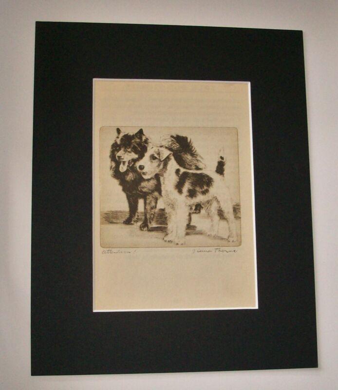 Elkhound Airedale Terrier Diana Thorne Bookplat Print 1936 Mat Terhune Attention