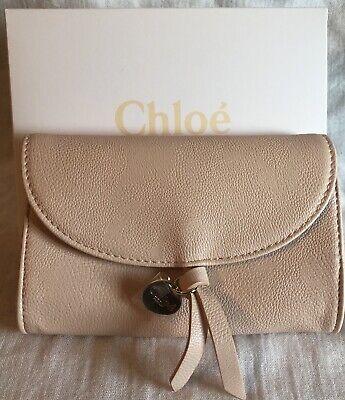 - Chloe Small Clutch , Blush Pink