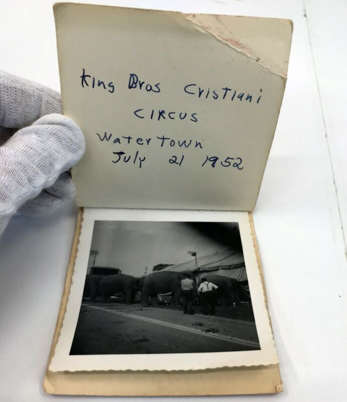 Circus Photo Album 1952 King Bros Cristiani Watertown NY pictures photographs