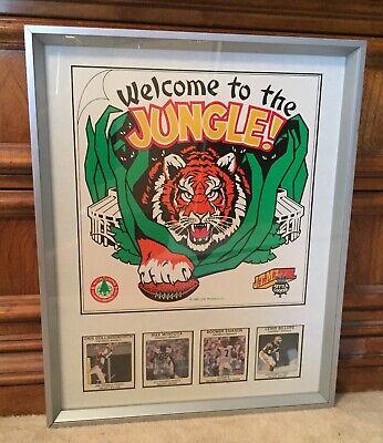 Vintage Framed Cincinnati Bengals / JTM Advertising Large Card w/4 Player Cards