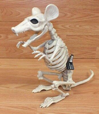 World Market Brand Large Rat Skeleton Halloween / Holiday Decoration Only *READ* - World Market Halloween