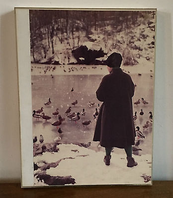1970 Photograph Old Woman Feeding Ducks Birds in Central Park Artistic New York