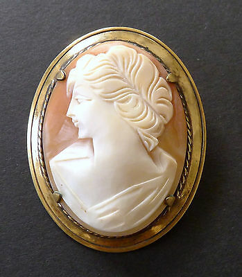 Vintage Shell Cameo Gold Plated Brooch Pin Left Facing Lady Antique 1920's