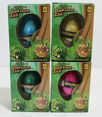4 NEW GROWING PET DINOSAUR EGGS GROW DINO HATCHING HATCH EGG  (Dinosaur Egg Hatching)