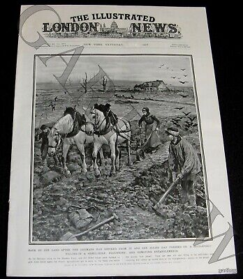 WORLD WAR I 1917 FARMERS PLOWING OVER TRENCH ART + CARRIER PIGEON PICTORIAL