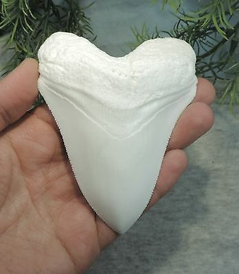 SERRATED 4 3/16'' LONG MEGALODON TOOTH REPLICA/FOSSIL SHARKS TOOTH TEETH