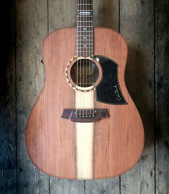 COLE CLARK FATLADY ACOUSTIC GUITAR WITH HARDSHELL CASE
