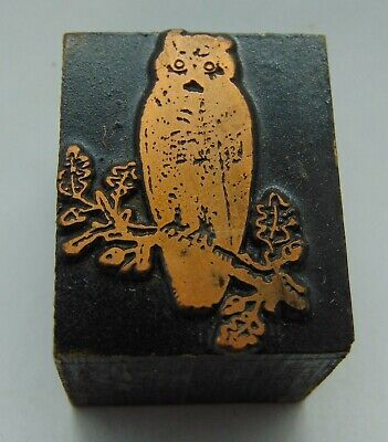Printing Letterpress Printers Block Owl On Tree Branch With Leaves